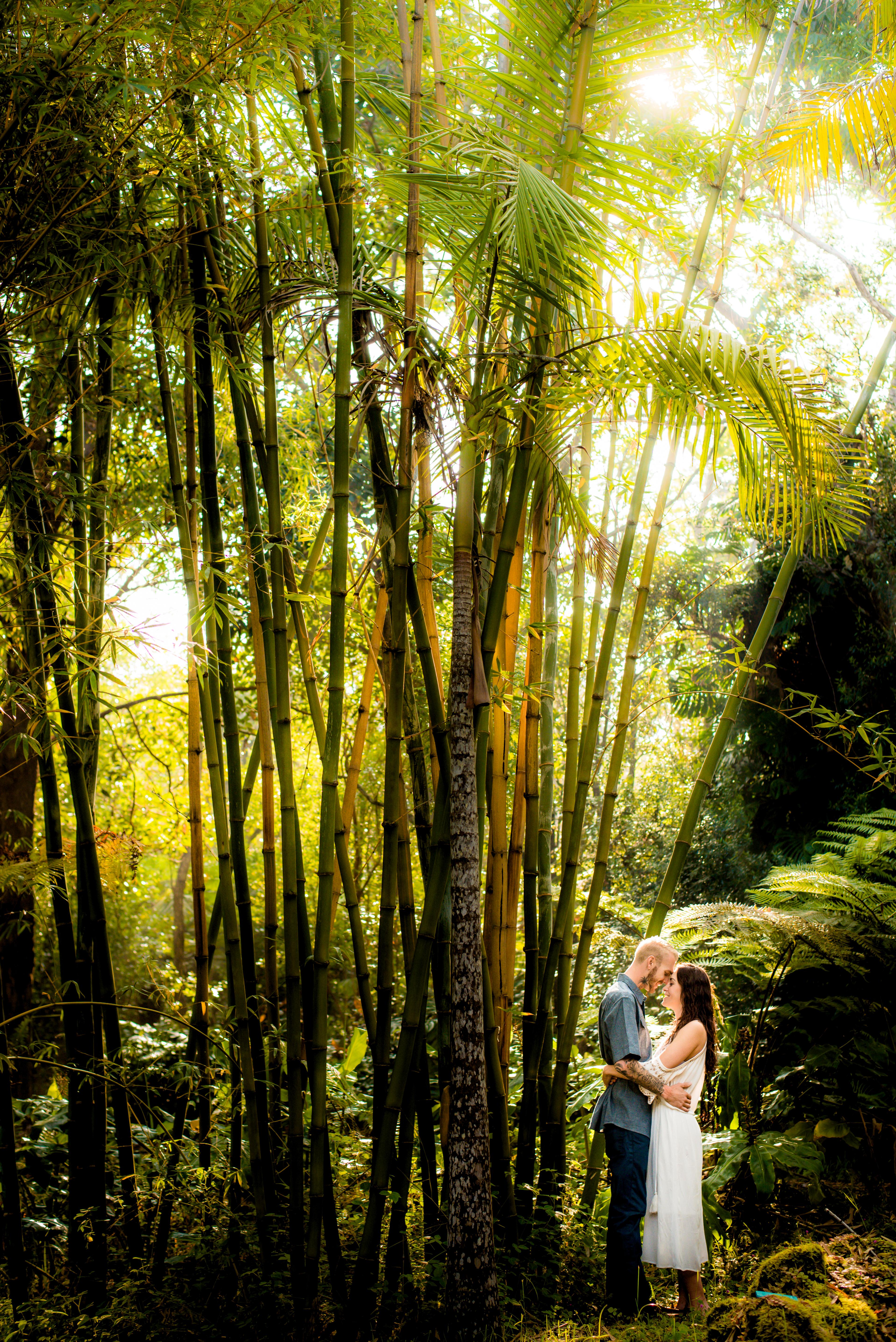 kaloko, forest, engagement, couple, hawaii, big island